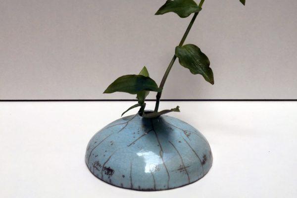 Soliflore bleu