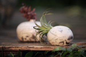 Boule végétale en raku nu